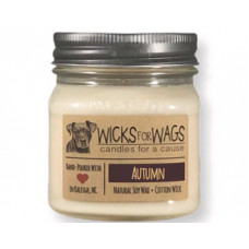 Wicks for Wags Autumn candle