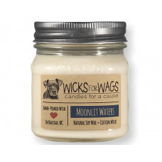 Wicks for Wags Moonlit Waters candle