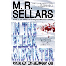 In The Bleak Midwinter (A Special Agent Constance Mandalay Novel)